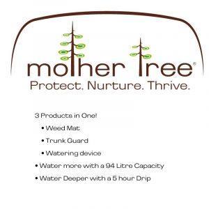 Mother Tree - Urban Tree Nurturing from Eco Health Industries