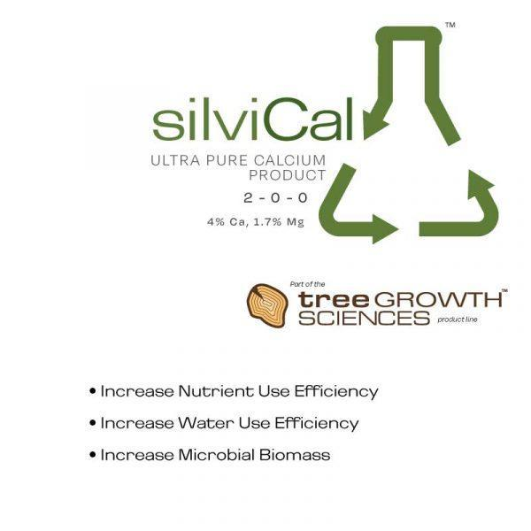 SilviCal - Magnesium & Calcium Boost from Eco Health Industries